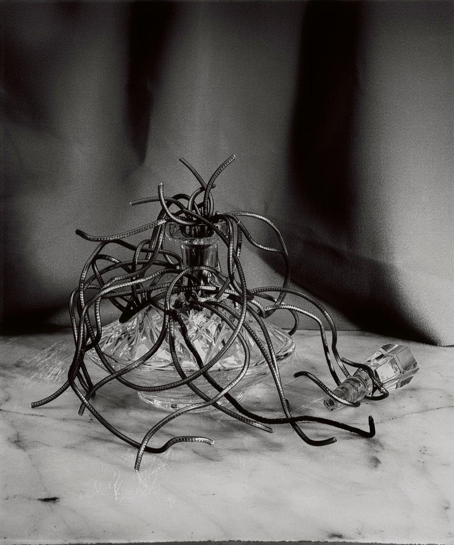 Medusa, 1983