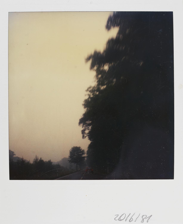 025_Polaroids1981
